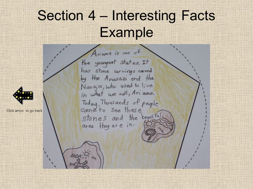 Section 4 – Interesting Facts Example Click arrow to go back