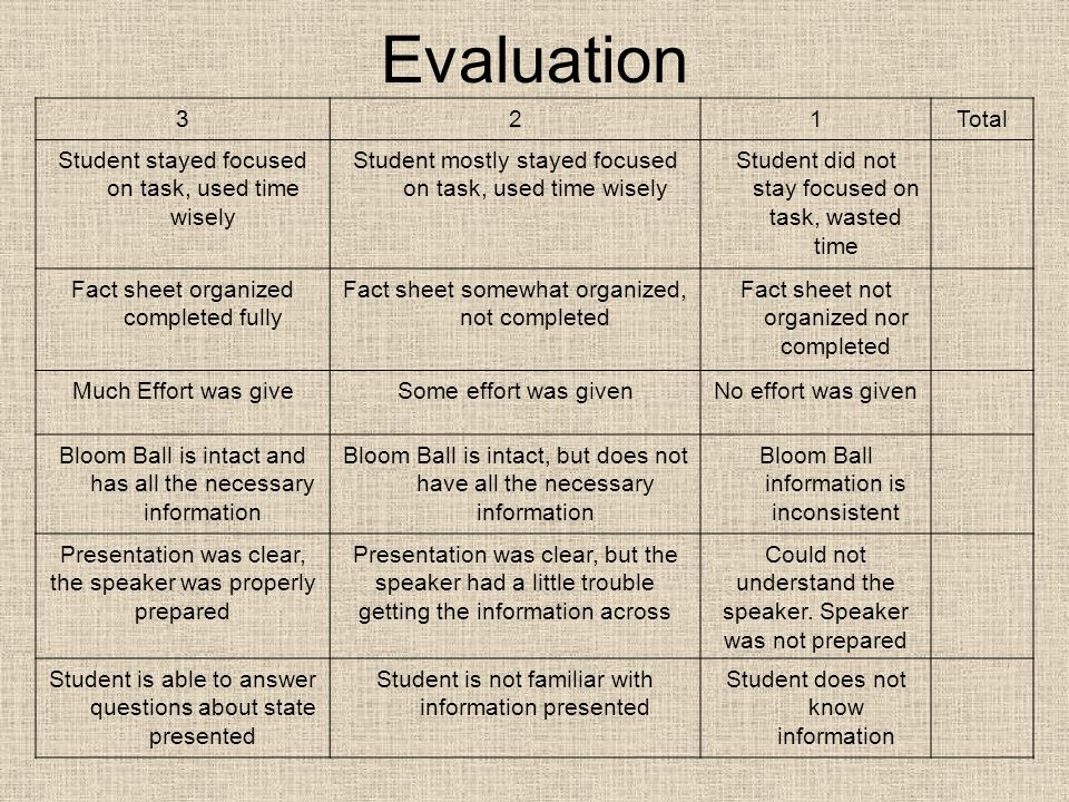 Evaluation 321Total Student stayed focused on task, used time wisely Student mostly stayed focused on task, used time wisely Student did not stay focu