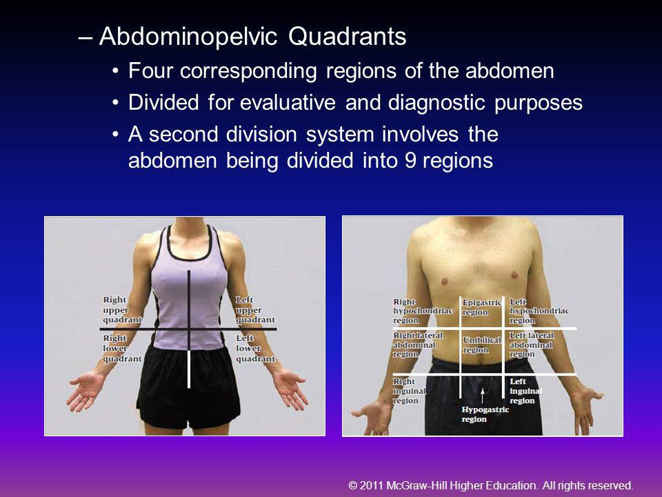© 2011 McGraw-Hill Higher Education. All rights reserved. –Abdominopelvic Quadrants Four corresponding regions of the abdomen Divided for evaluative a