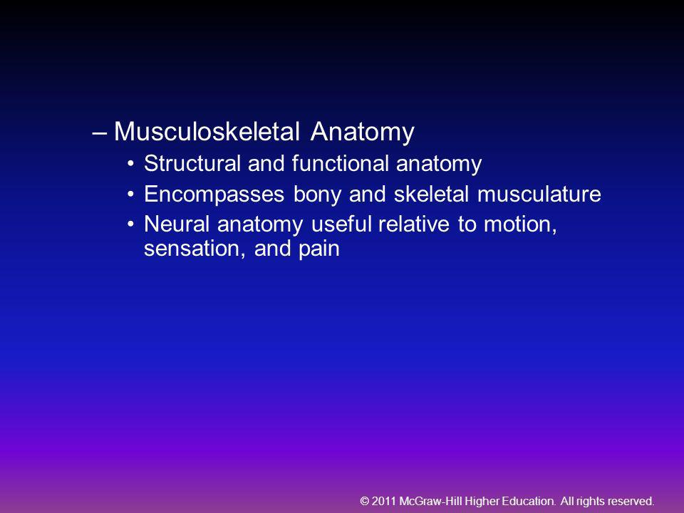 © 2011 McGraw-Hill Higher Education. All rights reserved. –Musculoskeletal Anatomy Structural and functional anatomy Encompasses bony and skeletal mus