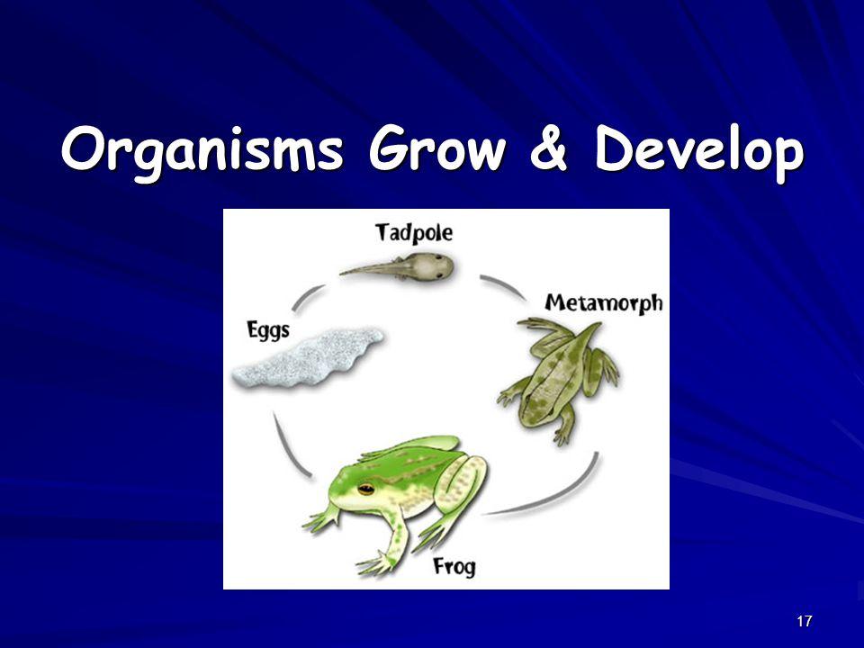 17 Organisms Grow & Develop