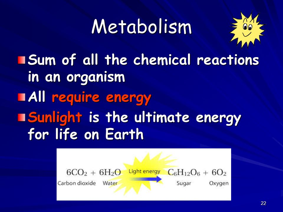 22 Metabolism Sum of all the chemical reactions in an organism All require energy Sunlight is the ultimate energy for life on Earth