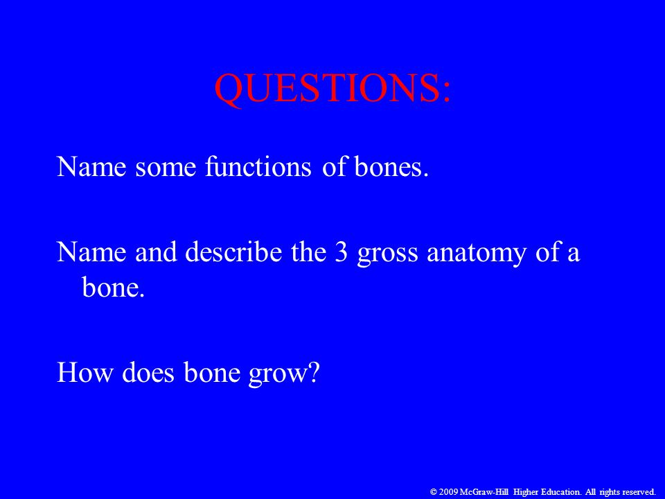 QUESTIONS: Name some functions of bones. Name and describe the 3 gross anatomy of a bone. How does bone grow? © 2009 McGraw-Hill Higher Education. All