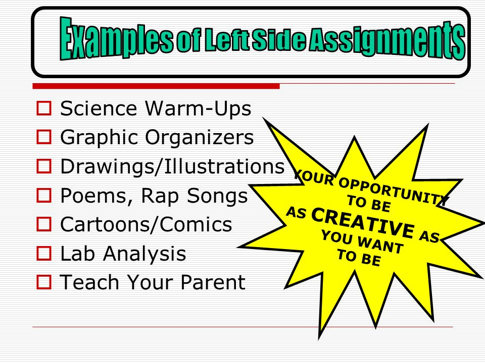 Science Warm-Ups Graphic Organizers Drawings/Illustrations Poems, Rap Songs Cartoons/Comics Lab Analysis Teach Your Parent YOUR OPPORTUNITY TO BE AS C