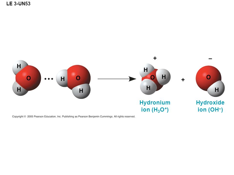 LE 3-UN53 Hydronium ion (H 3 O + ) Hydroxide ion (OH – )