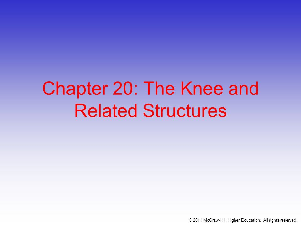 One of the most traumatized joint in the physically active population Hinge joint w/ a rotational component Stability is due primarily to ligaments, joint capsule and muscles surrounding the joint Designed for stability w/ weight bearing and mobility in locomotion © 2011 McGraw-Hill Higher Education.