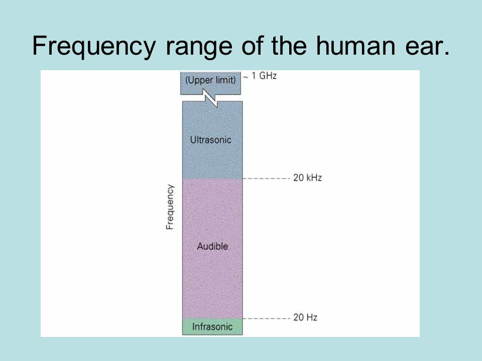 Frequency range of the human ear.