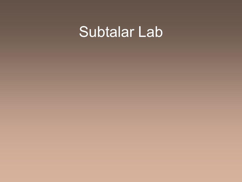 Subtalar Lab