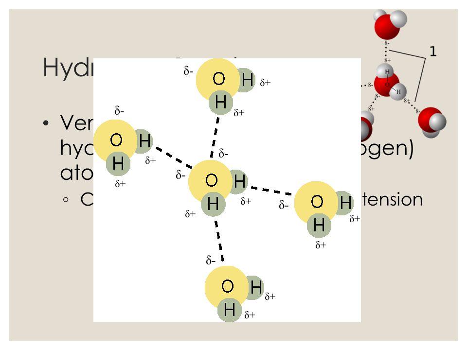 Hydrogen Bonds Very weak bonds between hydrogen and oxygen (or nitrogen) atom. Creates waters special surface tension