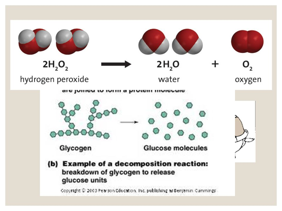 Decomposition Reaction The breakdown of a molecule into smaller molecules, atoms, or ions.