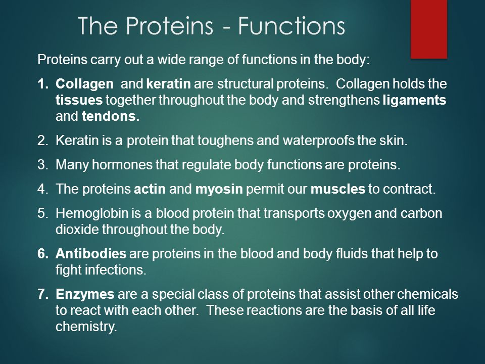 The Proteins - Functions Proteins carry out a wide range of functions in the body: 1.Collagen and keratin are structural proteins. Collagen holds the