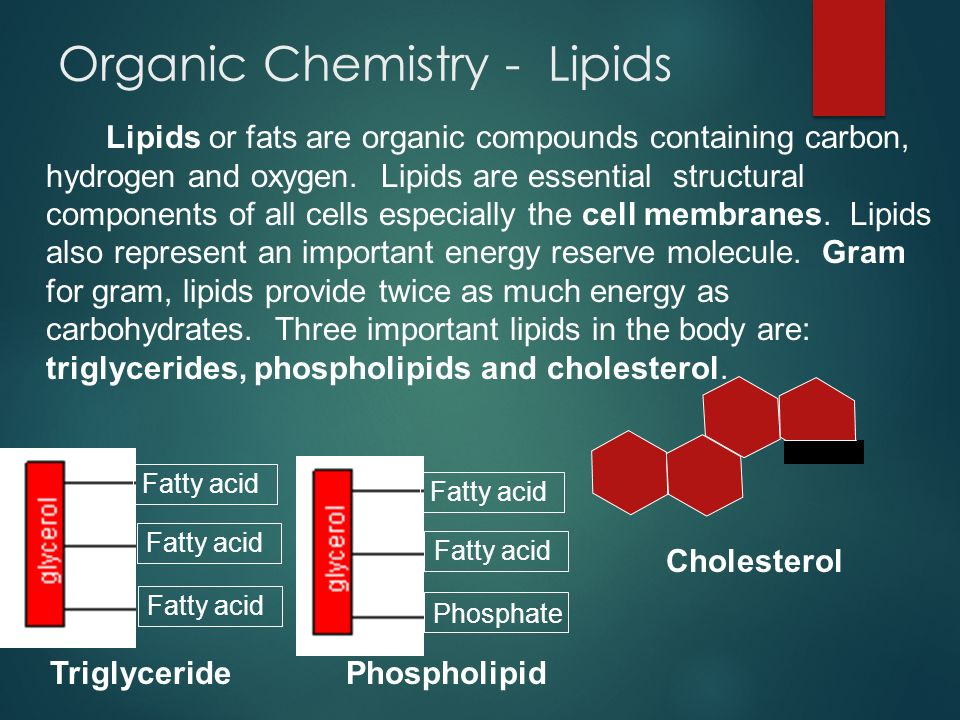 Organic Chemistry - Lipids Lipids or fats are organic compounds containing carbon, hydrogen and oxygen. Lipids are essential structural components of
