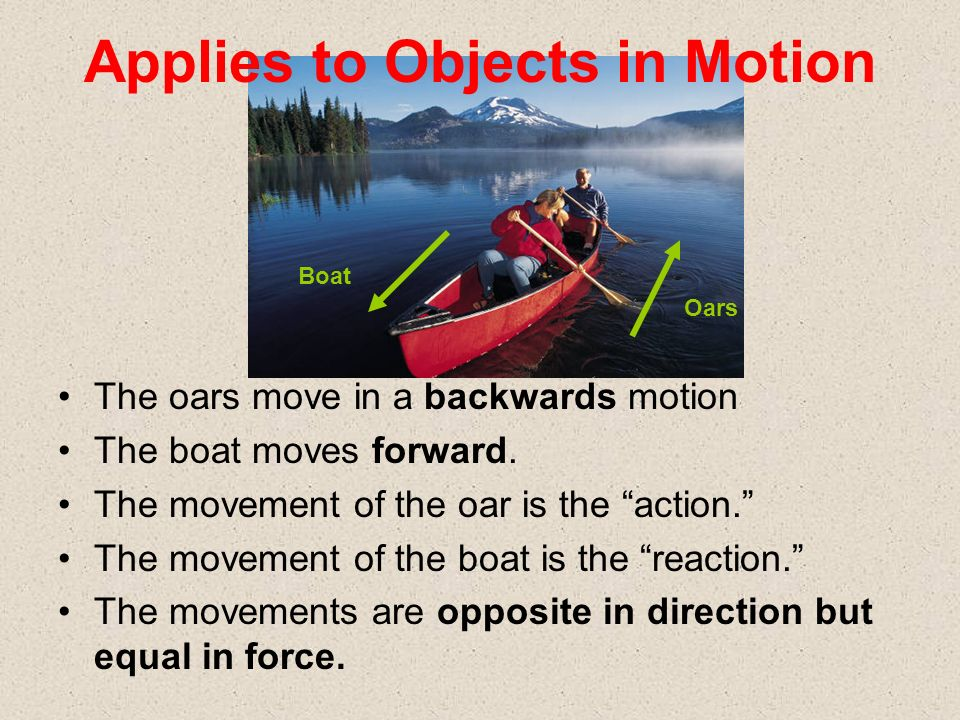 The oars move in a backwards motion The boat moves forward. The movement of the oar is the action. The movement of the boat is the reaction. The movem