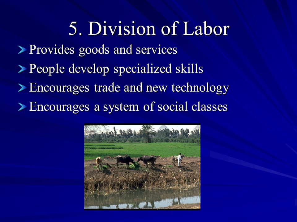5. Division of Labor Provides goods and services People develop specialized skills Encourages trade and new technology Encourages a system of social c