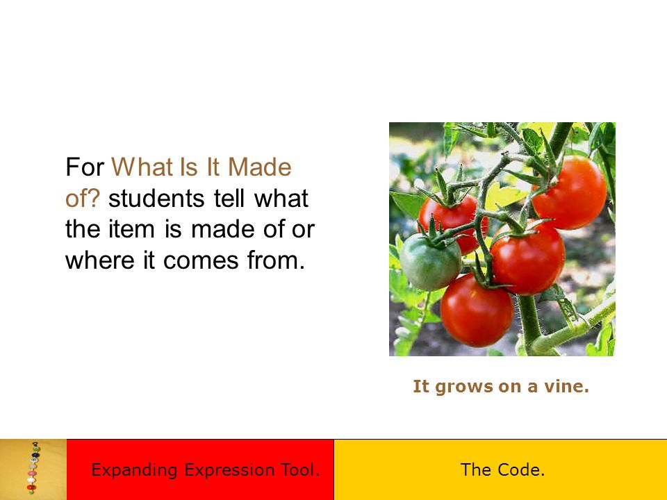 For What Is It Made of? students tell what the item is made of or where it comes from. It grows on a vine. Expanding Expression Tool.The Code.