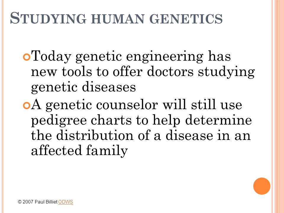 S TUDYING HUMAN GENETICS Today genetic engineering has new tools to offer doctors studying genetic diseases A genetic counselor will still use pedigre