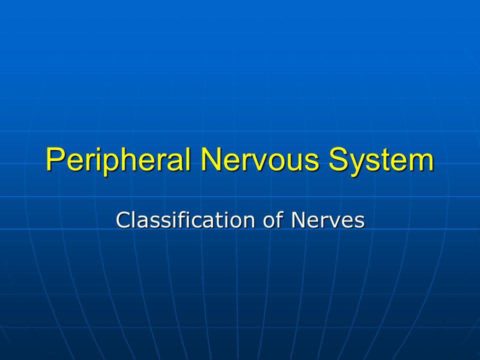 Peripheral Nervous System Classification of Nerves