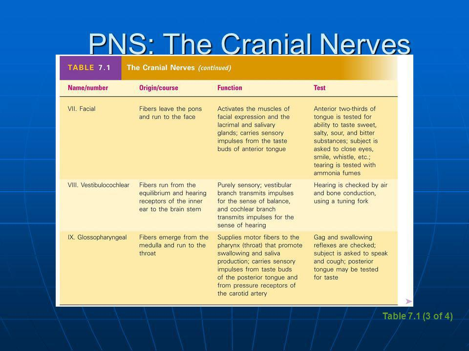 PNS: The Cranial Nerves Table 7.1 (3 of 4)
