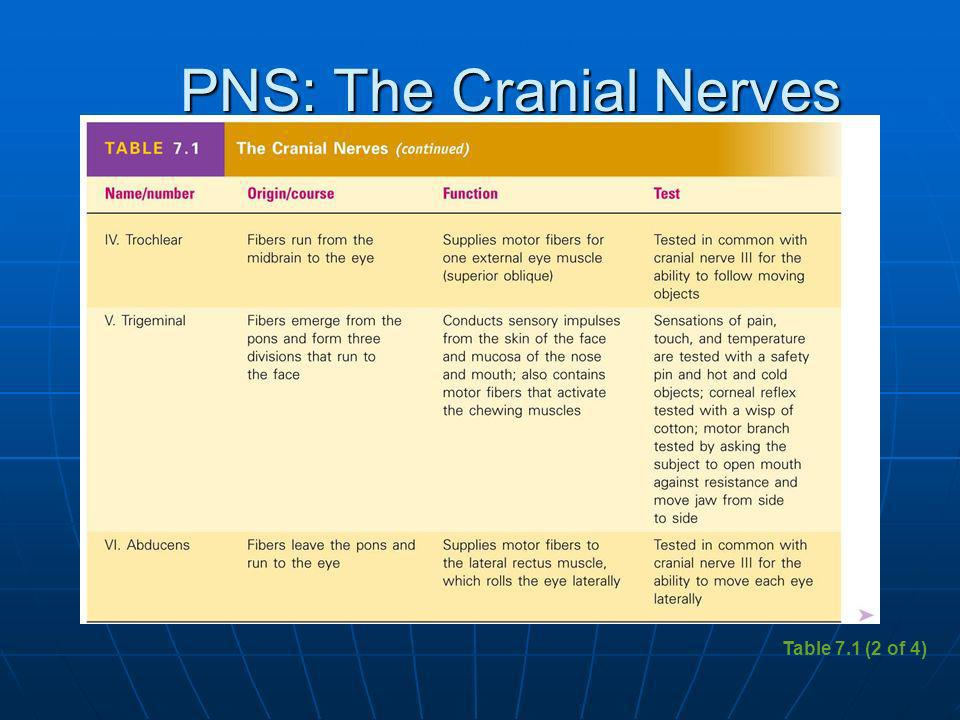 PNS: The Cranial Nerves Table 7.1 (2 of 4)