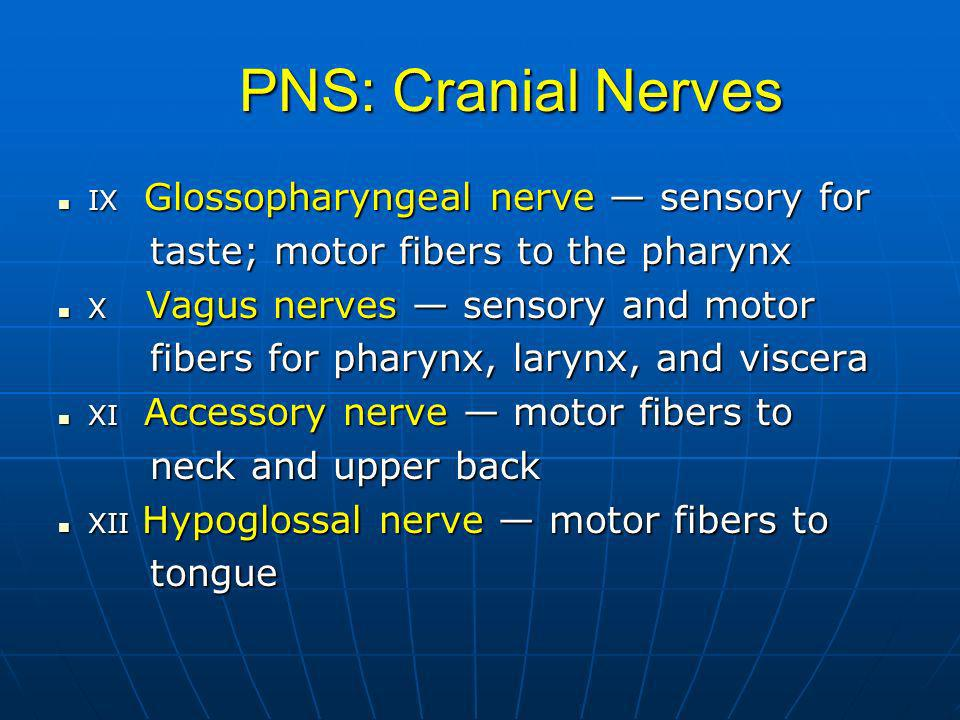 PNS: Cranial Nerves IX Glossopharyngeal nerve sensory for IX Glossopharyngeal nerve sensory for taste; motor fibers to the pharynx taste; motor fibers