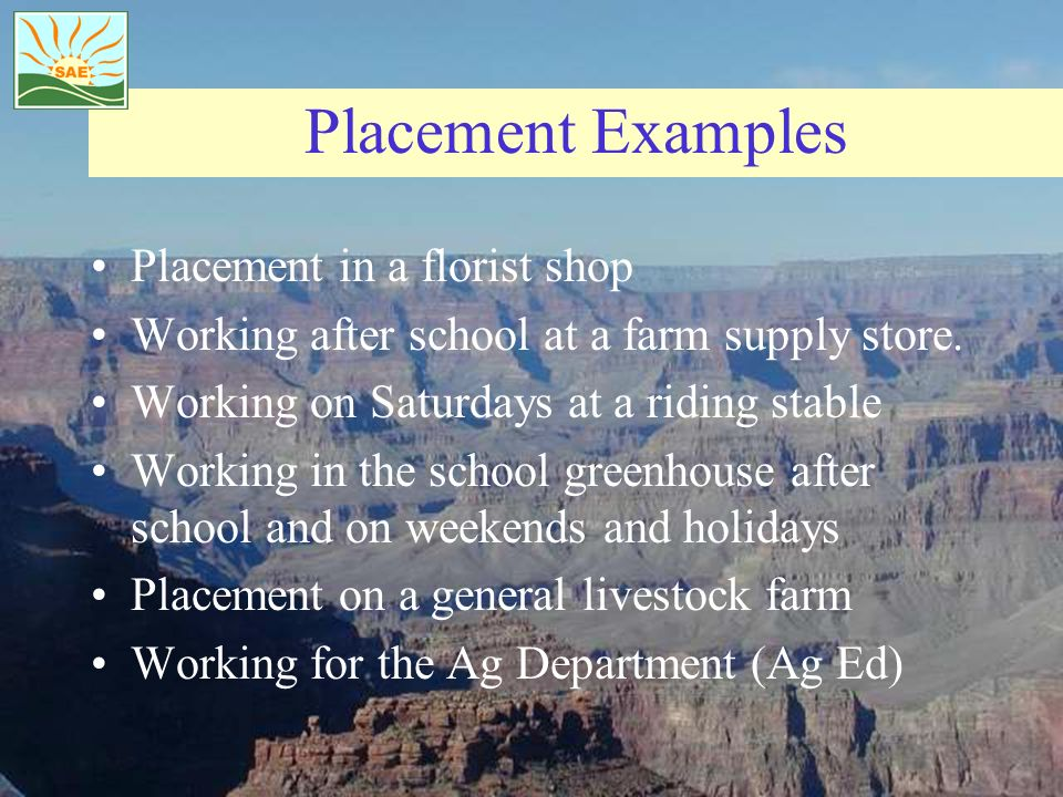 Placement Examples Placement in a florist shop Working after school at a farm supply store. Working on Saturdays at a riding stable Working in the sch