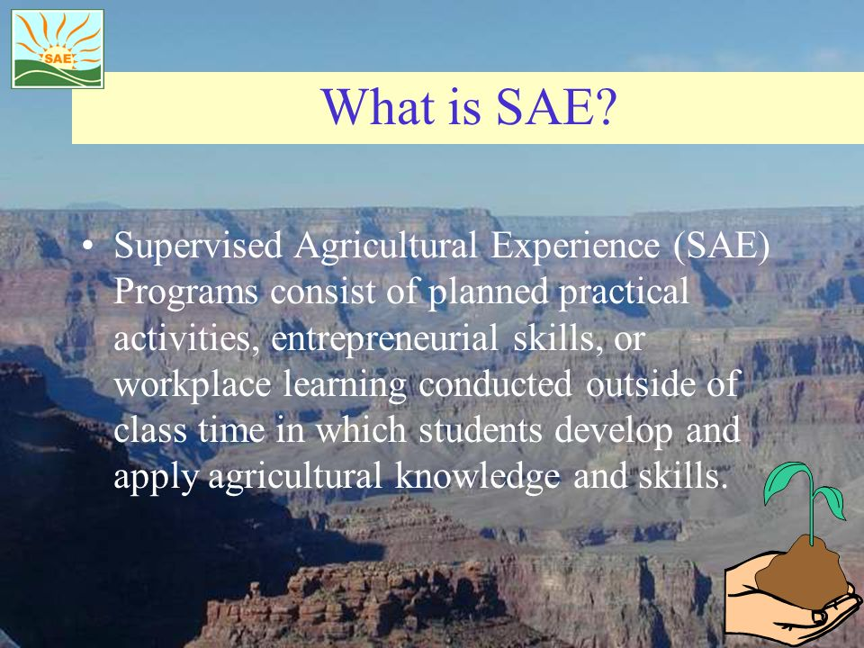 What is SAE.