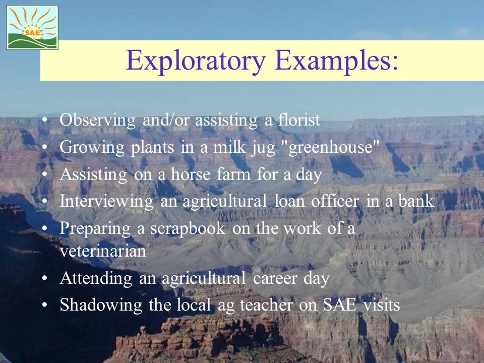 Exploratory Examples: Observing and/or assisting a florist Growing plants in a milk jug greenhouse Assisting on a horse farm for a day Interviewing an agricultural loan officer in a bank Preparing a scrapbook on the work of a veterinarian Attending an agricultural career day Shadowing the local ag teacher on SAE visits