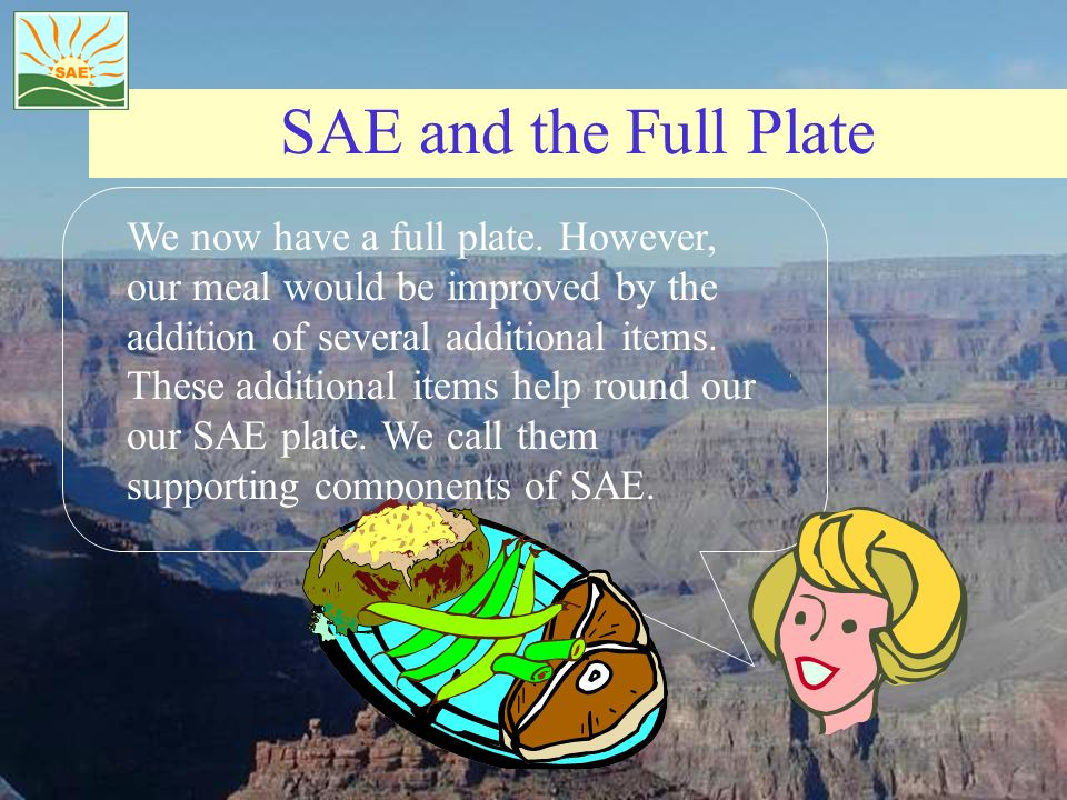 SAE and the Full Plate We now have a full plate. However, our meal would be improved by the addition of several additional items. These additional ite