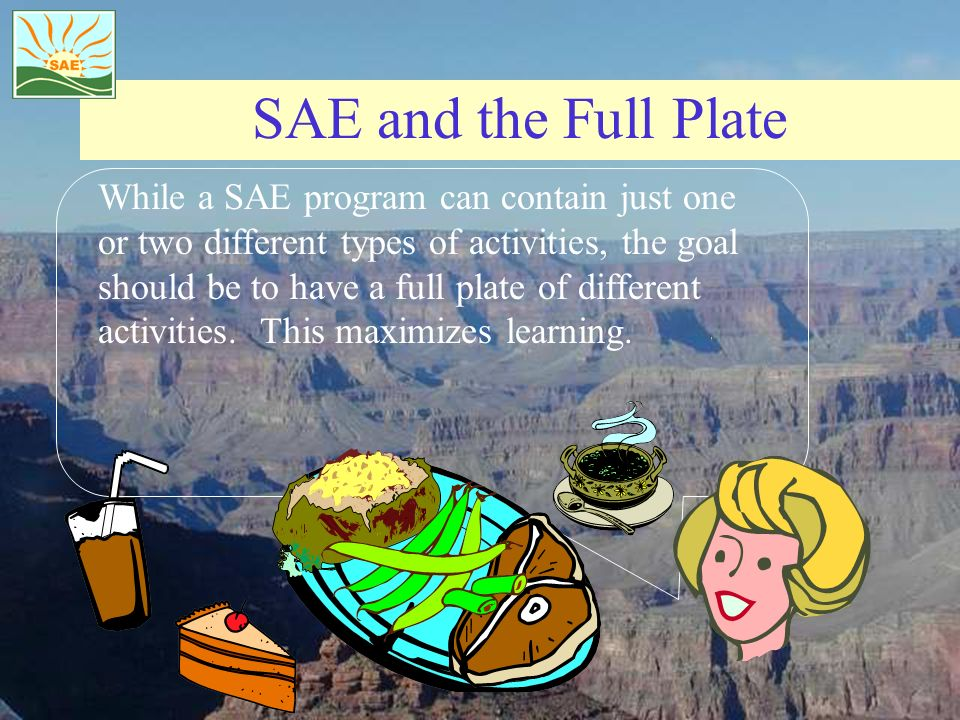 SAE and the Full Plate While a SAE program can contain just one or two different types of activities, the goal should be to have a full plate of diffe