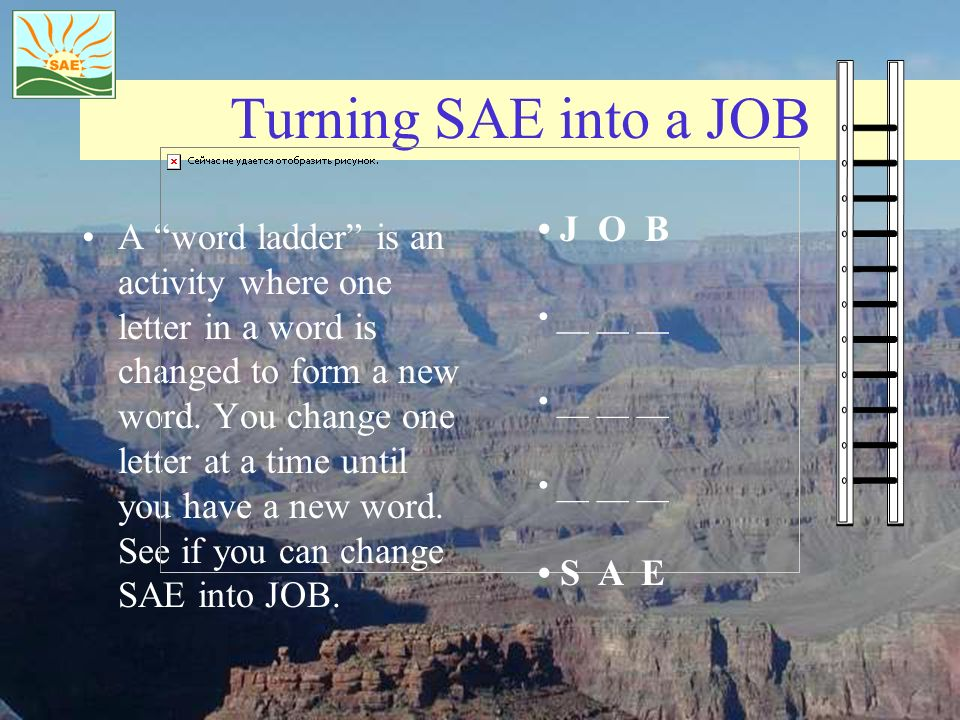 Turning SAE into a JOB A word ladder is an activity where one letter in a word is changed to form a new word.