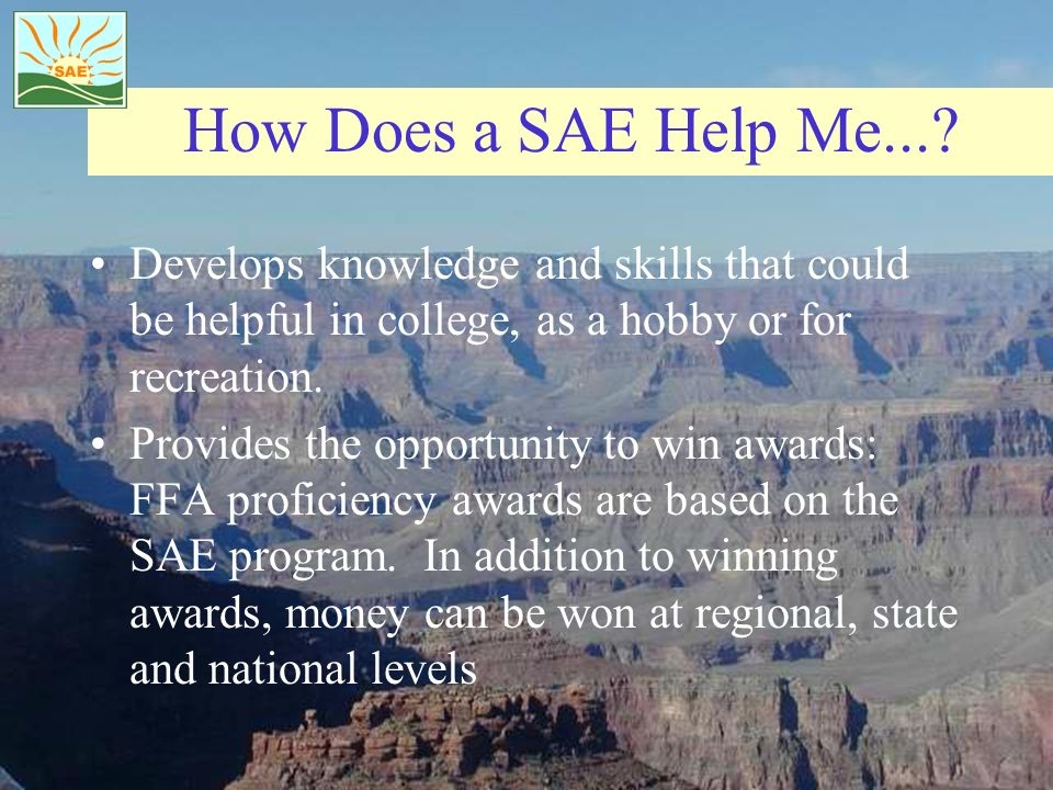 How Does a SAE Help Me....