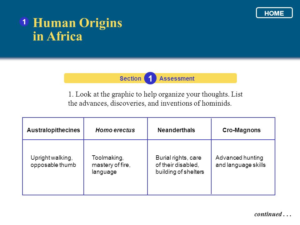1. Look at the graphic to help organize your thoughts. List the advances, discoveries, and inventions of hominids. Human Origins in Africa 1 Section 1