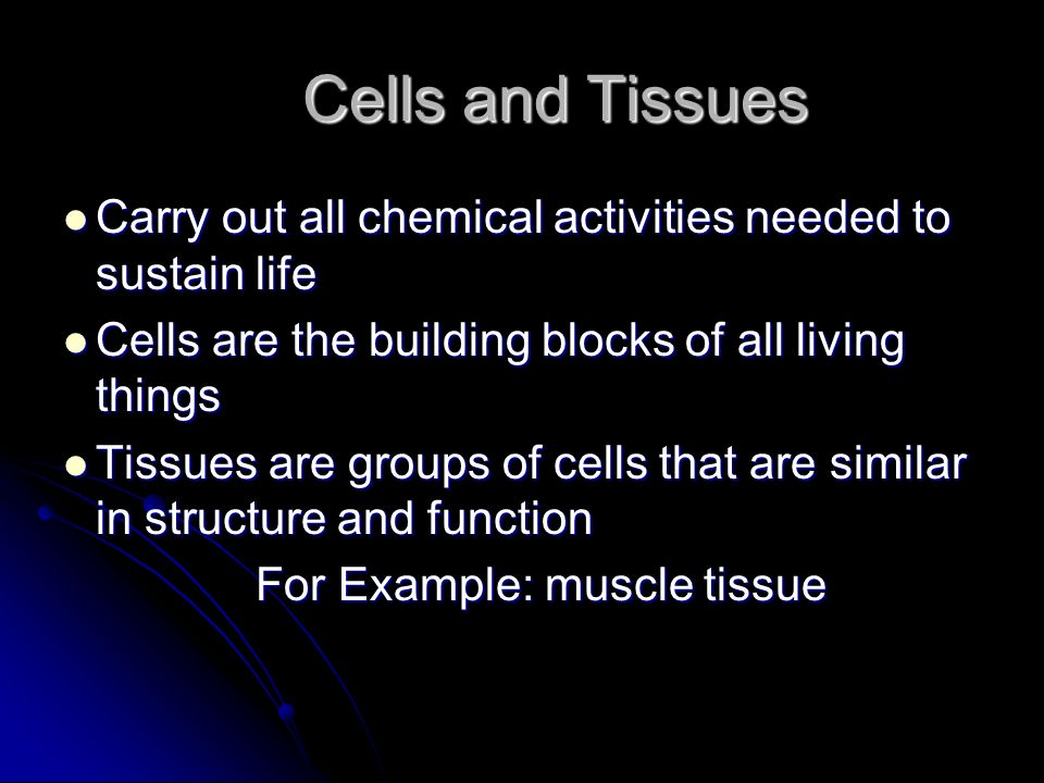 Carry out all chemical activities needed to sustain life Carry out all chemical activities needed to sustain life Cells are the building blocks of all
