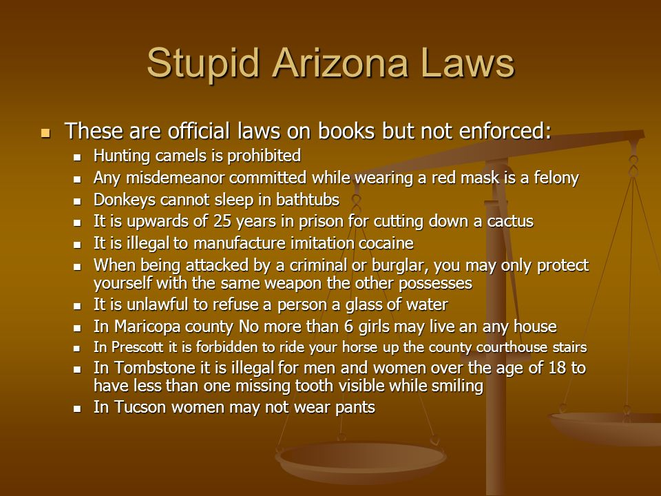 Stupid Arizona Laws These are official laws on books but not enforced: These are official laws on books but not enforced: Hunting camels is prohibited Hunting camels is prohibited Any misdemeanor committed while wearing a red mask is a felony Any misdemeanor committed while wearing a red mask is a felony Donkeys cannot sleep in bathtubs Donkeys cannot sleep in bathtubs It is upwards of 25 years in prison for cutting down a cactus It is upwards of 25 years in prison for cutting down a cactus It is illegal to manufacture imitation cocaine It is illegal to manufacture imitation cocaine When being attacked by a criminal or burglar, you may only protect yourself with the same weapon the other possesses When being attacked by a criminal or burglar, you may only protect yourself with the same weapon the other possesses It is unlawful to refuse a person a glass of water It is unlawful to refuse a person a glass of water In Maricopa county No more than 6 girls may live an any house In Maricopa county No more than 6 girls may live an any house In Prescott it is forbidden to ride your horse up the county courthouse stairs In Prescott it is forbidden to ride your horse up the county courthouse stairs In Tombstone it is illegal for men and women over the age of 18 to have less than one missing tooth visible while smiling In Tombstone it is illegal for men and women over the age of 18 to have less than one missing tooth visible while smiling In Tucson women may not wear pants In Tucson women may not wear pants