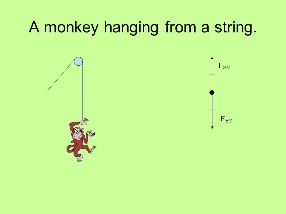 A monkey hanging from a string. F EM F SM