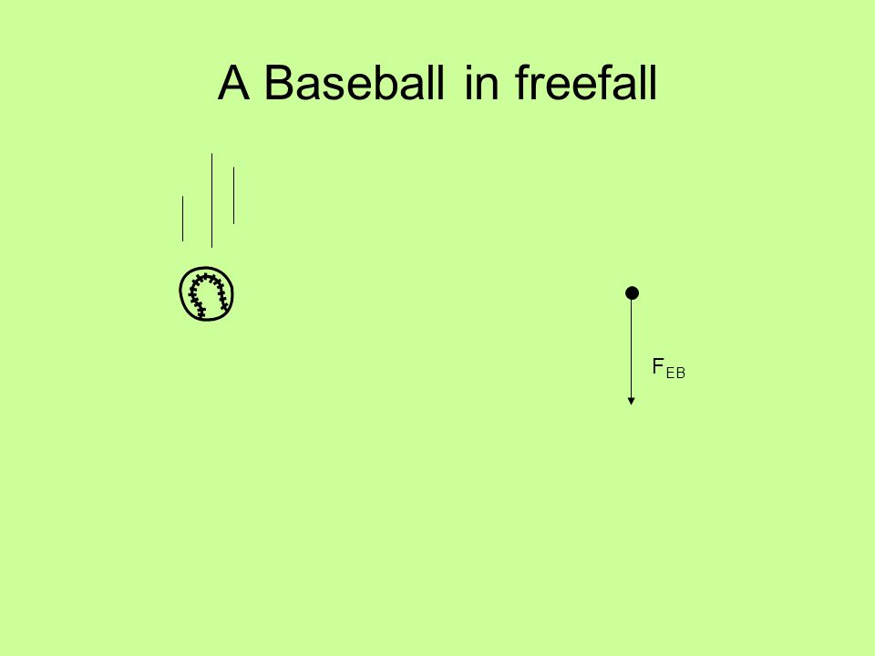 A Baseball in freefall F EB