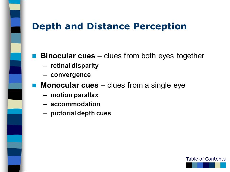 Depth and Distance Perception Binocular cues – clues from both eyes together –retinal disparity –convergence Monocular cues – clues from a single eye
