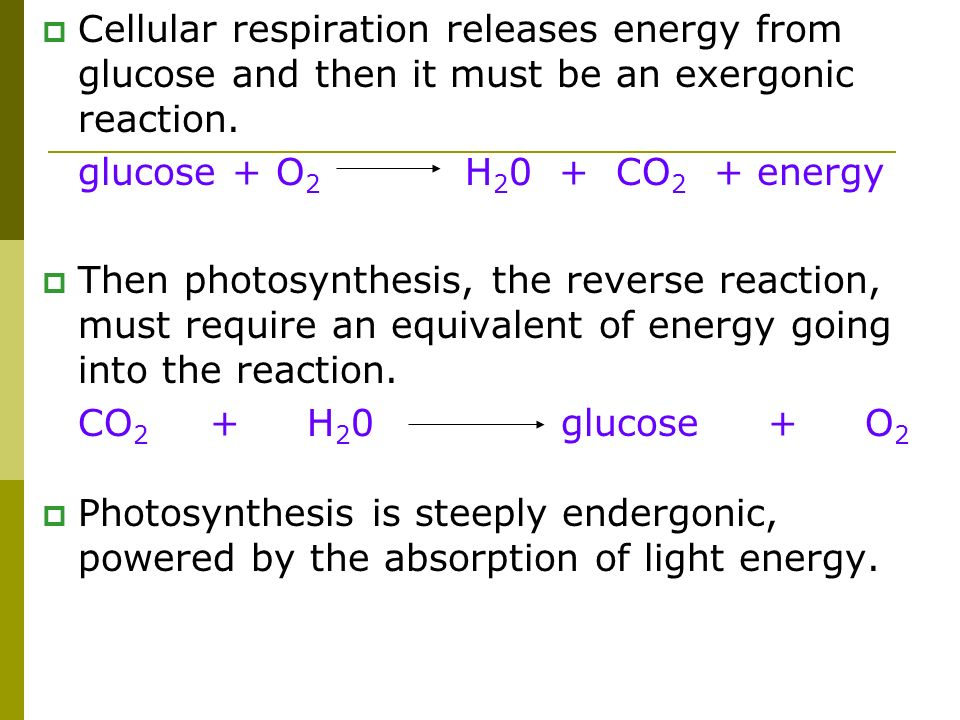 Cellular respiration releases energy from glucose and then it must be an exergonic reaction.