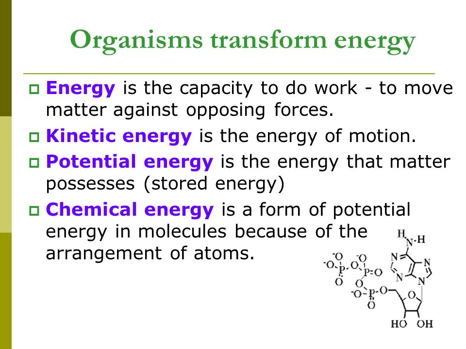 Energy is the capacity to do work - to move matter against opposing forces.