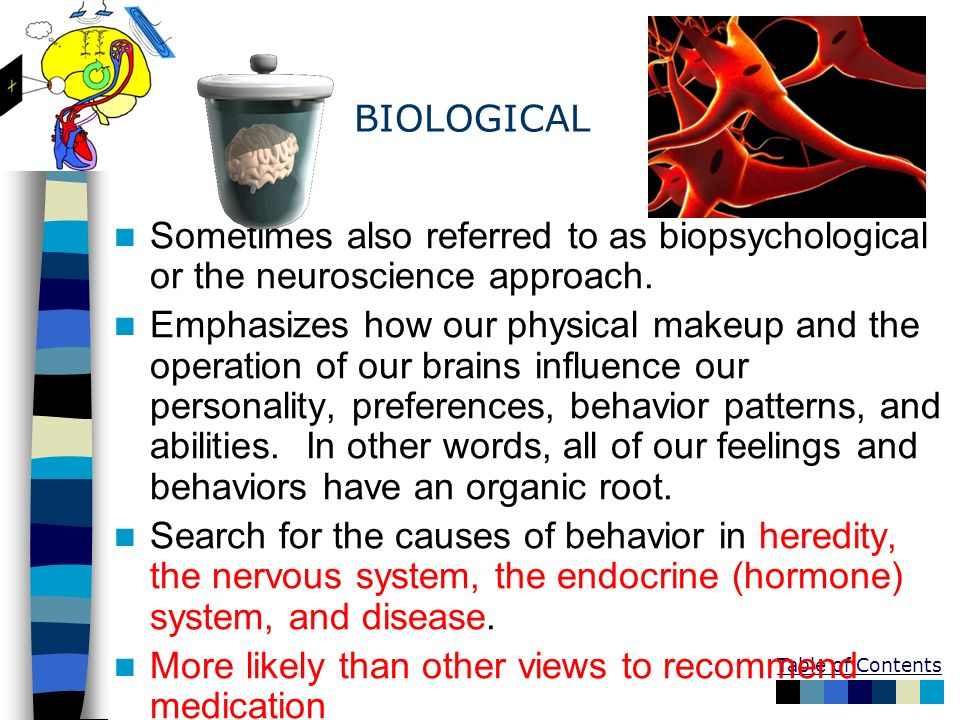 Table of Contents BIOLOGICAL Sometimes also referred to as biopsychological or the neuroscience approach. Emphasizes how our physical makeup and the o