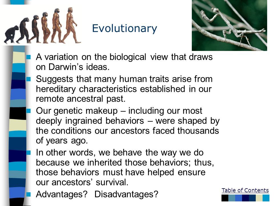Table of Contents Evolutionary A variation on the biological view that draws on Darwins ideas. Suggests that many human traits arise from hereditary c