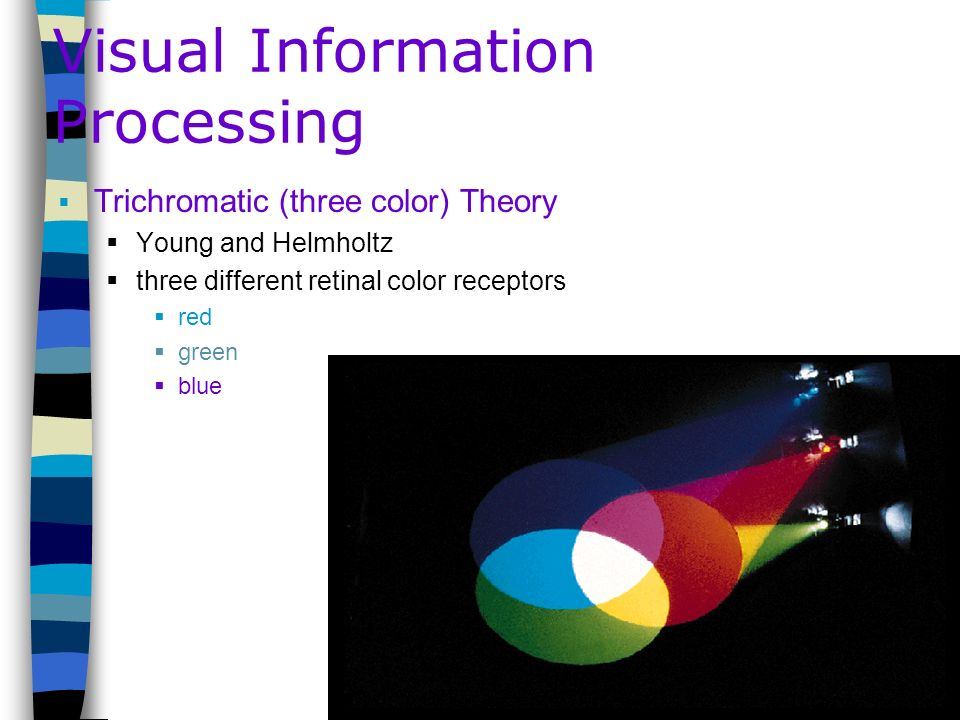 Visual Information Processing Trichromatic (three color) Theory Young and Helmholtz three different retinal color receptors red green blue