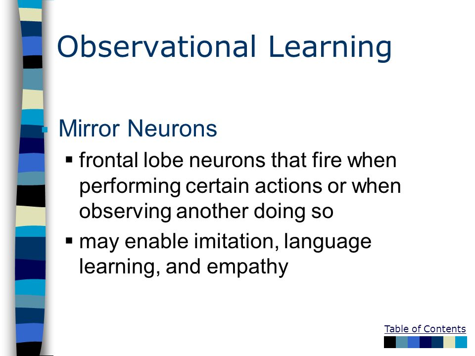 Table of Contents Observational Learning Mirror Neurons frontal lobe neurons that fire when performing certain actions or when observing another doing
