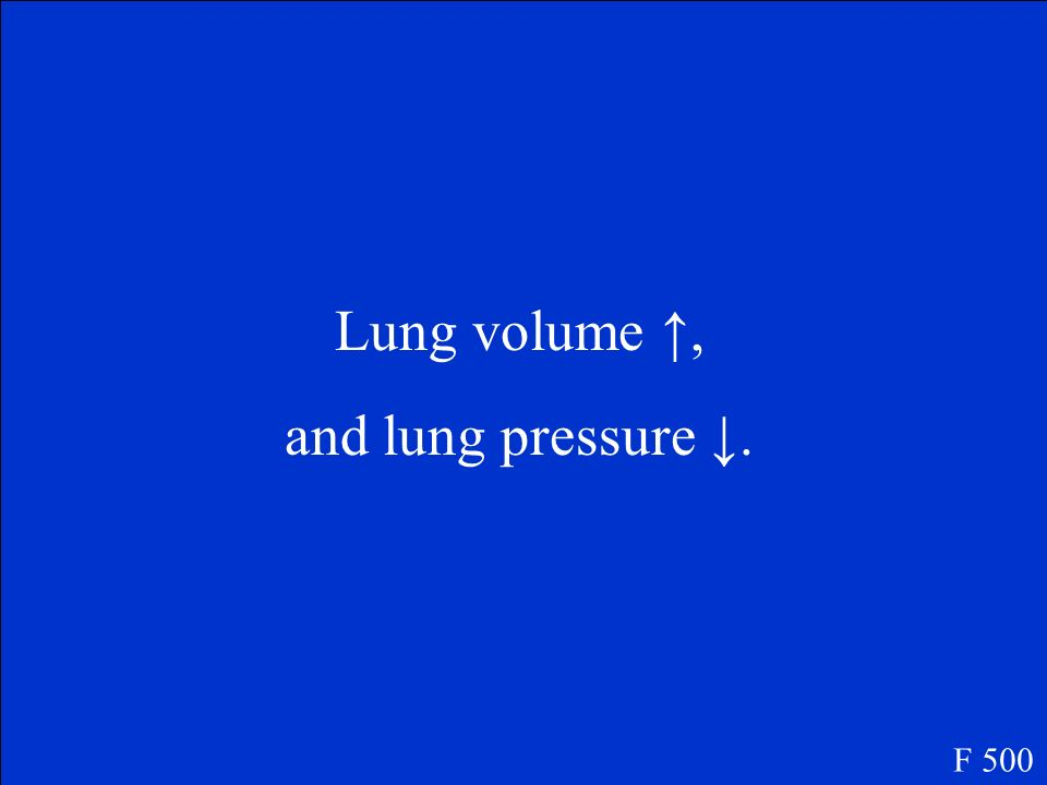 When we inhale, our lung volume ____ () and our lung pressure ____ (). F 500