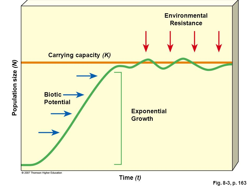 Fig. 8-3, p. 163 Environmental Resistance Time (t) Population size (N) Carrying capacity (K) Exponential Growth Biotic Potential