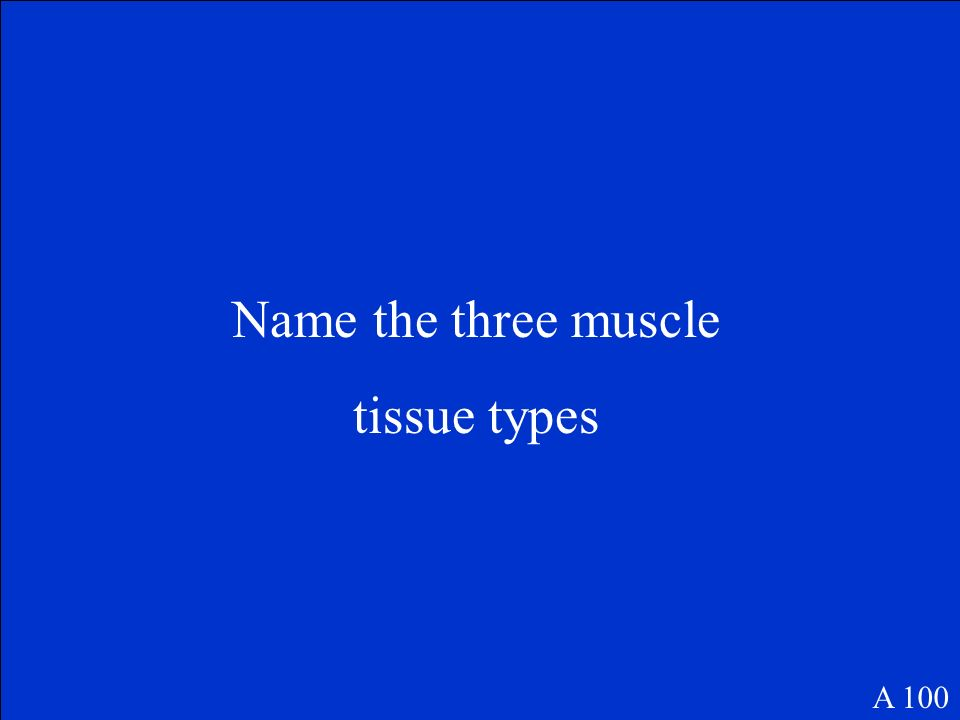 100 200 300 400 500 Muscle Tissue Muscle Naming Move that Body Muscles at Work Muscle Shapes Know your Muscles