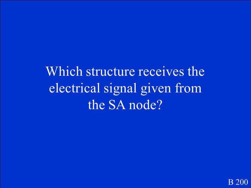 Sinoatrial Node (SA node) B 100