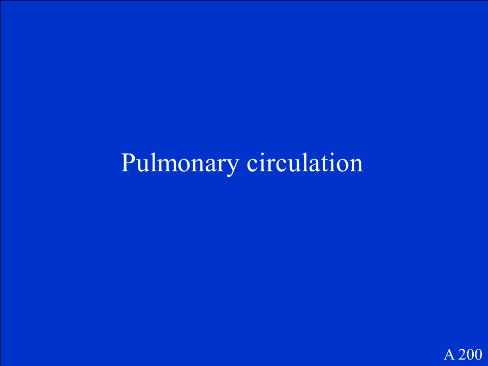 What is the term that describes blood flow between the heart and lungs A 200