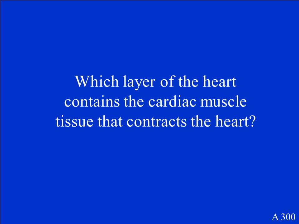 Which layer of the heart contains the cardiac muscle tissue that contracts the heart? A 300