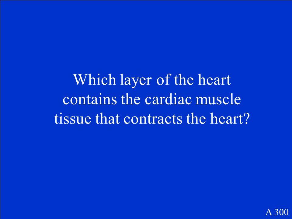 Pulmonary circulation A 200